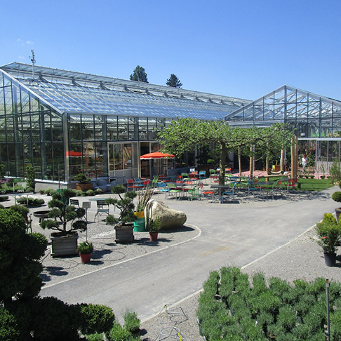Gartenpflanzen_Daepp_Muensingen5