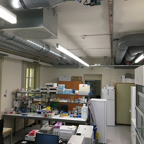 Institut_fuer_Anatomie_Bern5