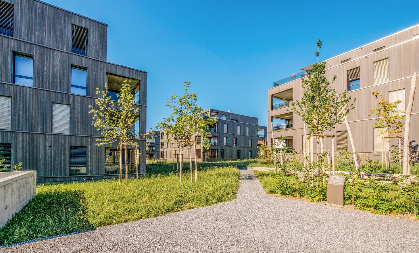 Wohnueberbauung_Bodenmattpark_Schmitten2